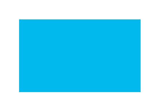 Brain Mets Logo